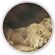 The Lion Sleeps Tonight Round Beach Towel