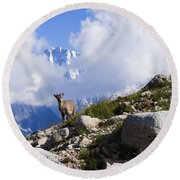 The Little Ibex Round Beach Towel