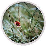 The Lonely Flower Round Beach Towel