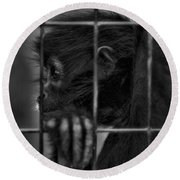 The Look Of Captivity Black And White Round Beach Towel