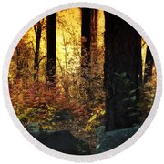 The Magic Of The Forest  Round Beach Towel