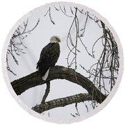 The Majestic Eagle Round Beach Towel