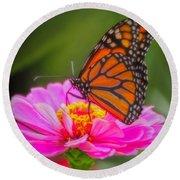 The Monarch's Flower Round Beach Towel
