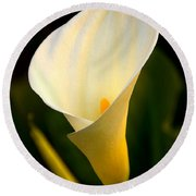 The Morning Trumpets Round Beach Towel