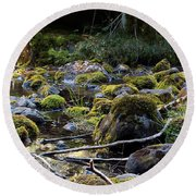 The Moss In The River Stones Round Beach Towel