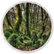 The Mossy Creatures Of The  Old Beech Forest 1 Round Beach Towel
