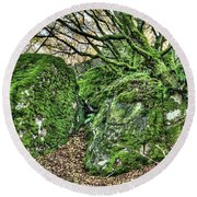 The Mossy Creatures Of The Old Beech Forest Round Beach Towel