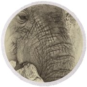 The Old Elephant Bull Round Beach Towel