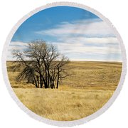 The Other Colorado Round Beach Towel