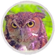 The Owl... Round Beach Towel