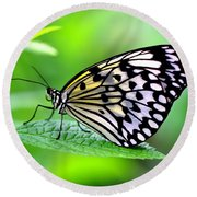 The Paper Kite Or Rice Paper Or Large Tree Nymph Butterfly Also Known As Idea Leuconoe 2 Round Beach Towel