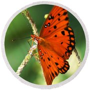 The Passion Butterfly Round Beach Towel