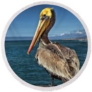 The Pelican Of Oceanside Pier Round Beach Towel