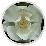 The Perfect Magnolia Bloom Round Beach Towel