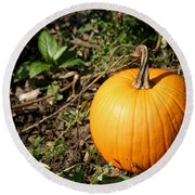 The Perfect Pumpkin In The Patch Round Beach Towel