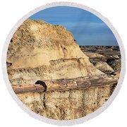 The Petrified Log Round Beach Towel