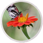 The Piano Key Butterfly Round Beach Towel