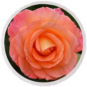 The Pink Rose Round Beach Towel