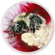 The Pollinator Round Beach Towel