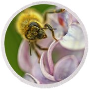 The Pollinator Round Beach Towel