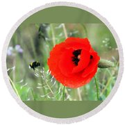 The Poppy And The Bee Round Beach Towel