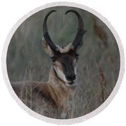 The Pronghorn 2 Dry Brushed Round Beach Towel