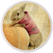 The Rabbit And The Pumpkin Round Beach Towel