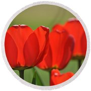 The Red Tulips Round Beach Towel