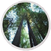 The Redwood Giants Round Beach Towel