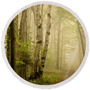 The Road Through The Woods Round Beach Towel