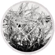 The Roots In Black And White Round Beach Towel by Lisa Russo
