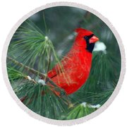 The Santa Bird Round Beach Towel
