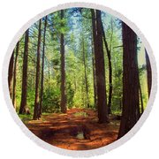 The Scenic Route Round Beach Towel