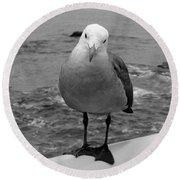 The Seagull Round Beach Towel