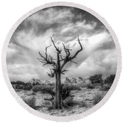 The Sentinal South Coyote Buttes Round Beach Towel