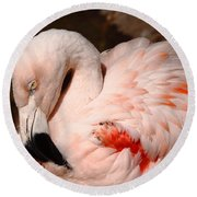 The Shy Flamingo Round Beach Towel