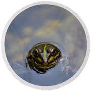 The Shy Frog Round Beach Towel