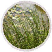 The Side Of The Lily Pond Round Beach Towel