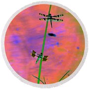 The Skimmer And The Whitetail Art #1 Round Beach Towel