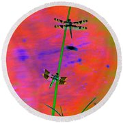 The Skimmer And The Whitetail Art #2 Round Beach Towel