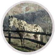 The Speckled Horse Round Beach Towel