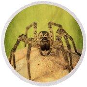 The Spider Series X Round Beach Towel