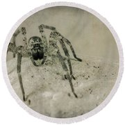 The Spider Series Xi Round Beach Towel