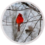Blue Eyes In The Snow Cardinal  Round Beach Towel