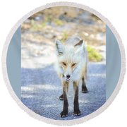 The Stare Round Beach Towel