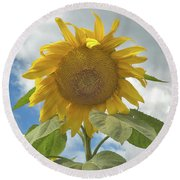 The Sun Is Out Round Beach Towel