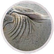 The Thinker - Elephant Seal On The Beach Round Beach Towel