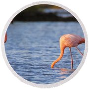 The Three Flamingos Round Beach Towel