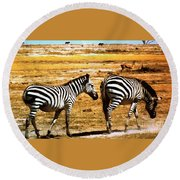 The Tired Zebras Round Beach Towel