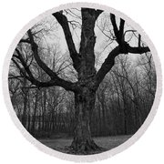 The Tree In The Park Round Beach Towel